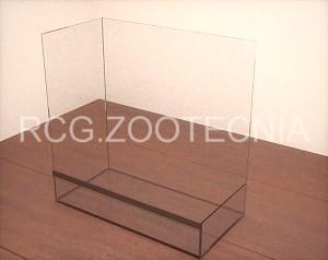 Terrario mixto, base vidrio