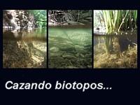 cazando biotopos 200