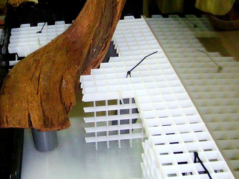 Estructura plataforma acuaterrario